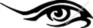 Eyes Decal 134