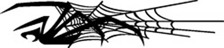 Spider Decal 44