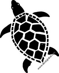 Turtle Decals